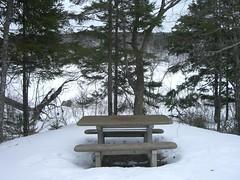 MacDonald Park 022