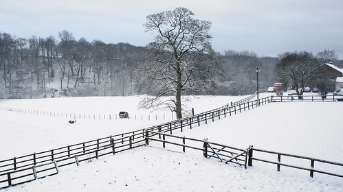 Valley Farm | by Mark Buchan Jones