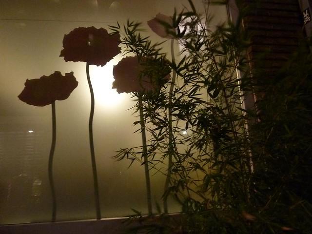 bamboe en raam