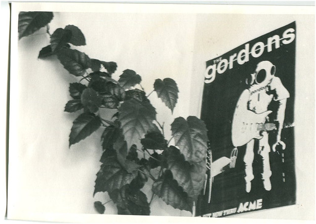 The Gordons, leafy