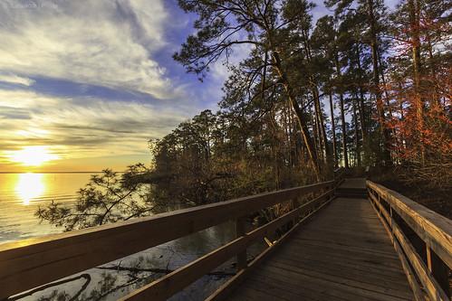 bridge light sunset sky water canon landscape photography gold golden woods texas canon1022 60d lakelivingstonstatepark