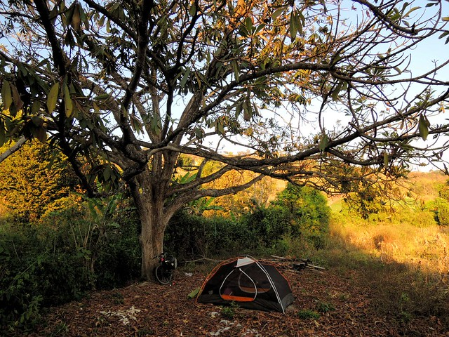 Camping under a mamey tree, next to water, perfect temperature.  Doesn't get much better than that. by bryandkeith on flickr