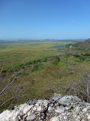 Parque Nacional Palo Verde - vanaf La Roca