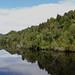 Down the Gordon River (2)