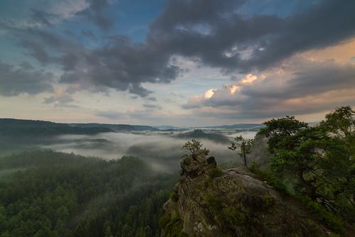 sunset sea mountains fog clouds de deutschland golden hiking natur adventure hour sachsen bluehour goldenhour seaofclouds hohnstein