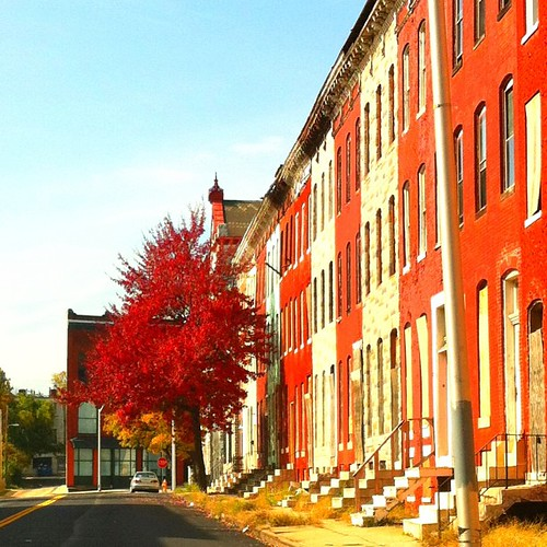 West Baltimore | by Artondra Hall
