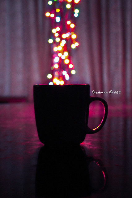 Would you like to have some BOKEH tea with me?