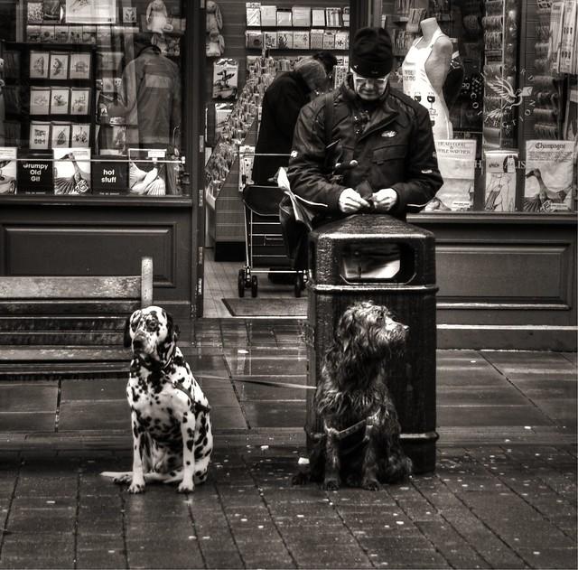 Waiting (Salisbury 2013)