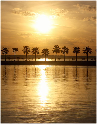 sunset lake canon gold texas houston allrightsreserved palmas katytexas oropuro tigerville eosrebelt3i flickrstruereflection1 alejandraesanz goldlakeatsunset
