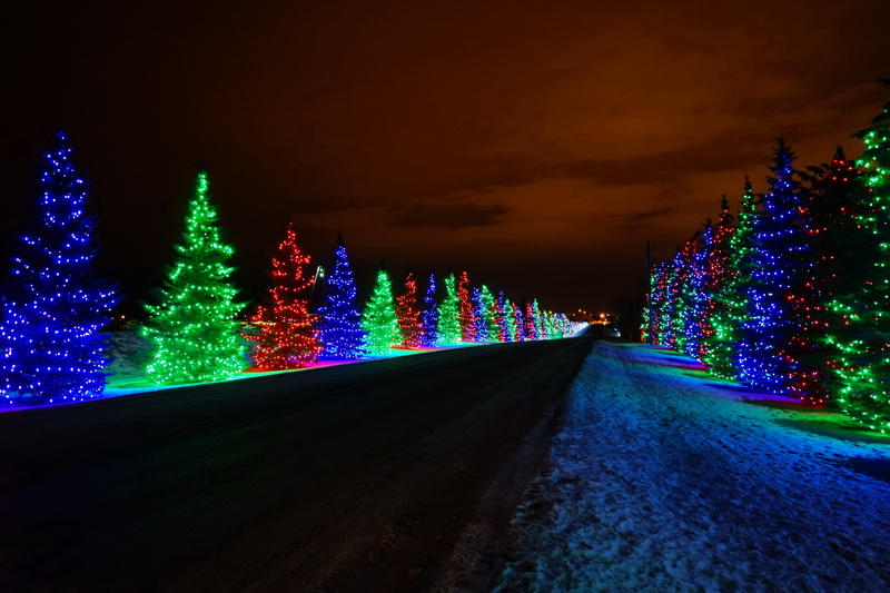 Christmas In Calgary Canada.Spruce Meadows Lights Calgary Spruce Meadows Drive Throug