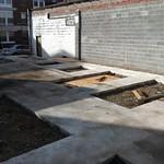 Exeter Garden - 1st steps