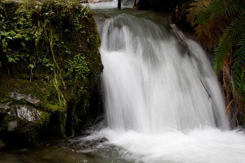 Reserva Rio Blanco, Manizales | by The Colombian Way