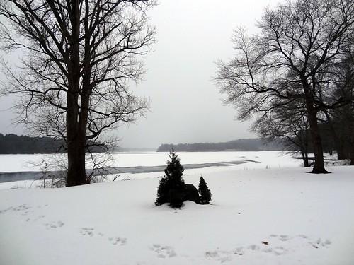 winter usa snow geotagged unitedstates massachusetts lakes february cedarstreet wenham project365 2013 wenhamlake hamiltonwenham elizabeththomsen 01984 ethomsen johncharlesphillips geo:lat=4260004807 geo:lon=7089817138