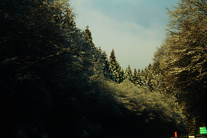 社山_08