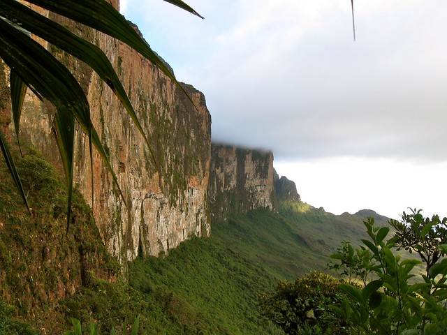 View of Mount Roraima's Western cliff