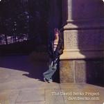 DavidSerkoProject-11-3