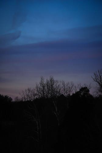 trees sunset silver dusk nikkor55300mmafsdxlens