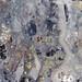 High-Grade Mineralization por ore_reserve
