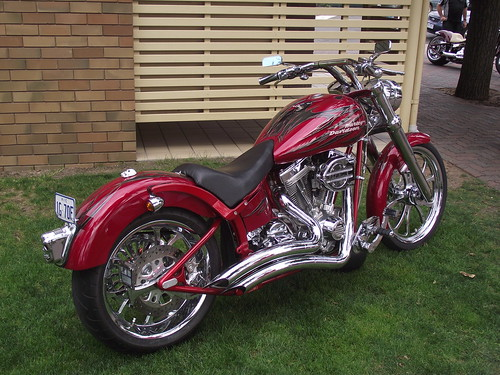Custom Harley Davidson Motorcycle | by Five Starr Photos & Collectables