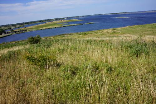 Stige-Oe-Nordudsigt-2014-07-04 (10)