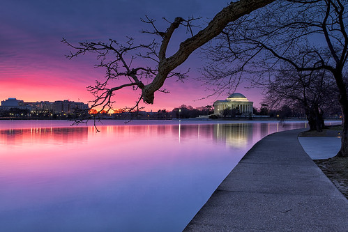 morning monument night sunrise dawn washingtondc early cloudy framed sunday ethereal glowing tranquil jeffersonmemorial tidalbasin yoshinocherrytree noblossoms justbuds