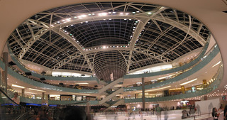 Dallas Galleria ice rink 270 | by David Leo Veksler