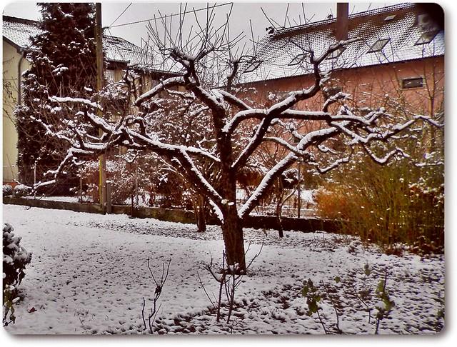 Last winter's minutes-Az utolsó sóhajai a télnek