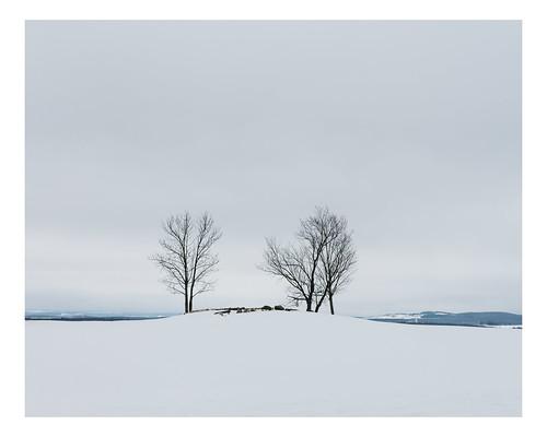 rural winter landscape saintsylvestre québec canada ca