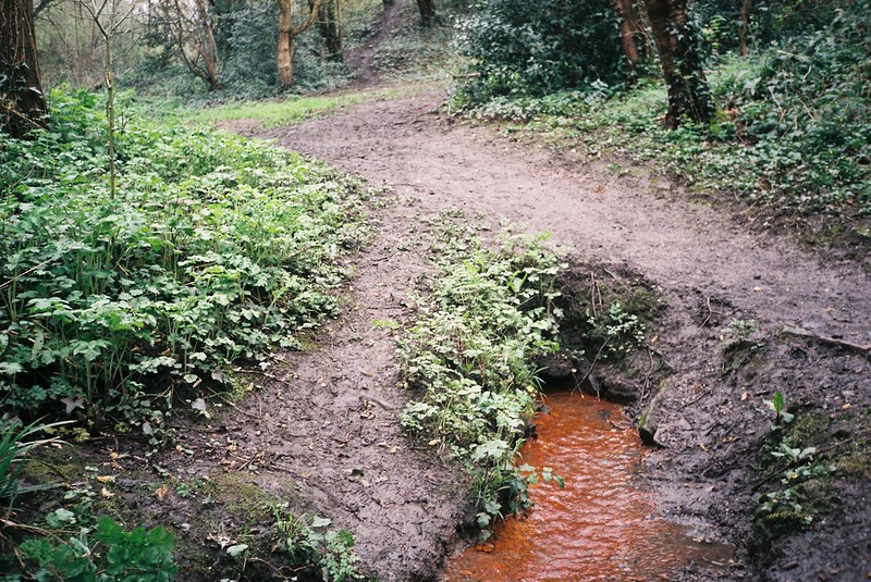 The red stream, Coombe Valley Nature Reserve