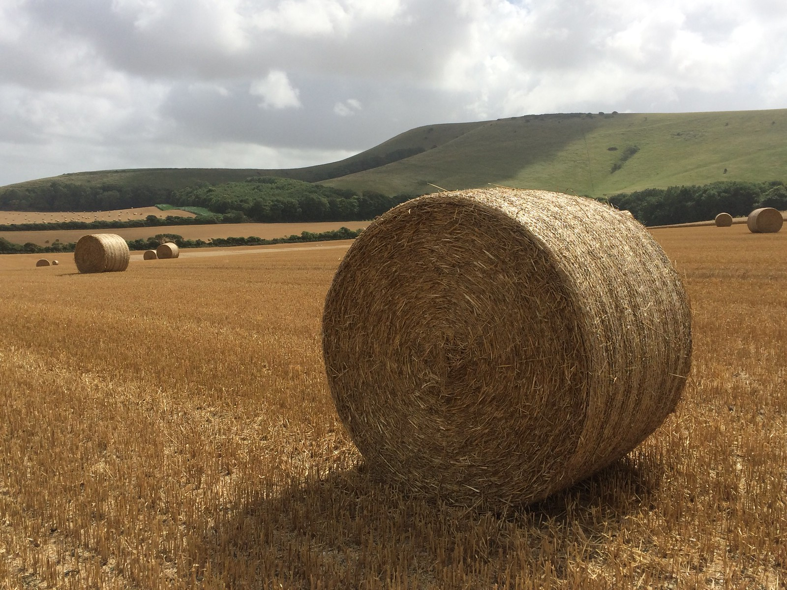August 20, 2016: Glynde to Seaford South Downs hay bales