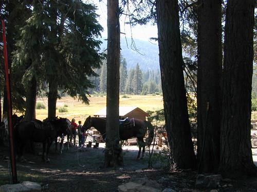 Horseback Lassen Park