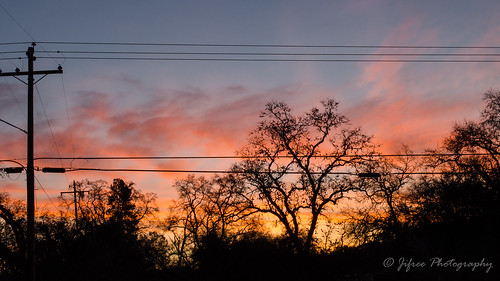 sunrisemorningpowertreesjifreephotographycaliforniaauburn