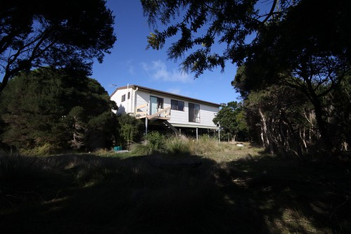 Hiding in the trees - last house standing in the  Summerland Estate