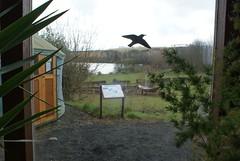 Earthship Fife Visitor Centre in Kinghorn