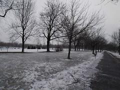 金, 2013-02-01 08:48 - 大氷原と化した公園