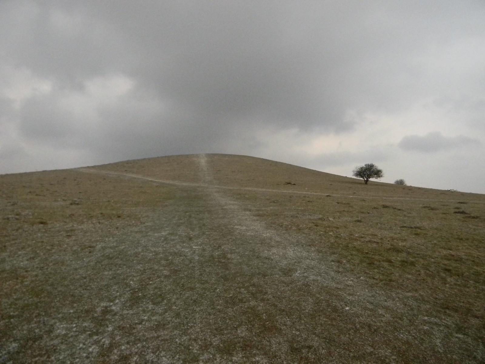 Bleak hummock Tring to Berkhamsted (via shortcut)