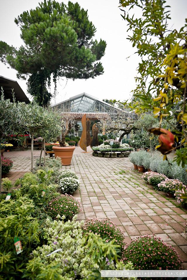 Suggerimenti Per Giardini Galbiati Stock Di Giardino Decorativo