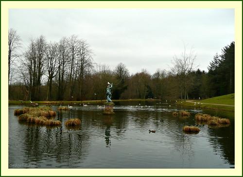 lakesedgefieldparkbird neptunetreesskywater