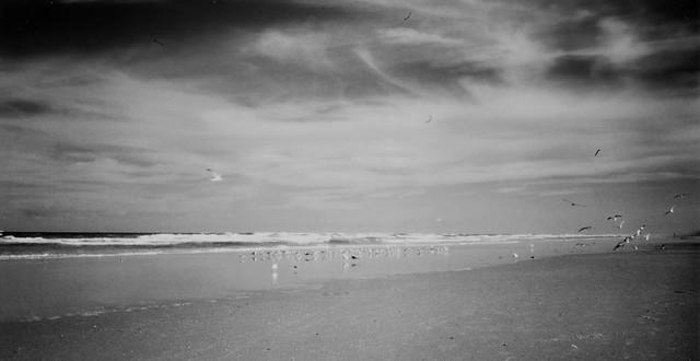 Port Aransas Coastline (Black & White)