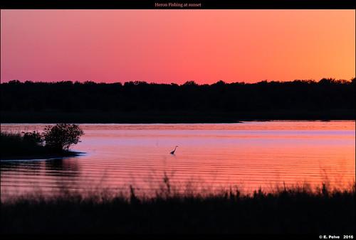 lewisvillelake texas sonya7rii sunset oct2016 sonyfe70300mmf4556goss