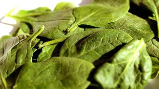 Spinach | by DeSegura89