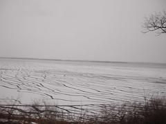 土, 2013-02-02 12:50 - 往路と比べると川の氷が溶けている