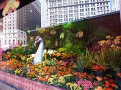 水, 2013-04-03 15:32 - Macy's Flower Show 2013