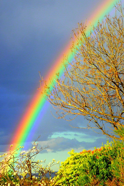 A RAINBOW before the STORM