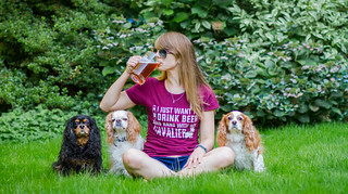 I just want to drink beer and hang with my cavalier(s) | by Sabrina Aspinall