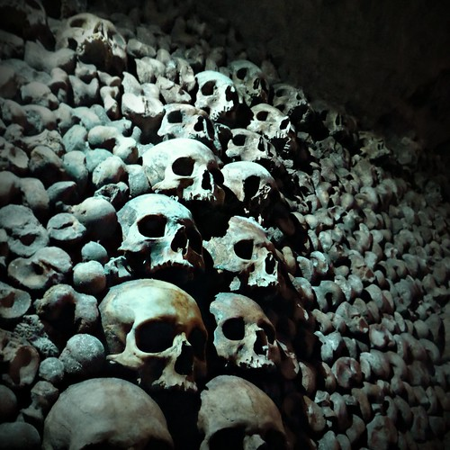 A wall of bones and skulls | by Gael Varoquaux