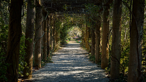 tunnel wilmington d800 wilmingtonnc airliegardens rabbithole