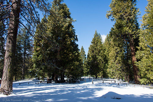 california nationalpark nikon nps yosemite yosemitenationalpark sleigh 28300mm johnk d600 yosemitepark tenayalodge horsedrawnsleigh nikond600 horsedrawnsleighride johnkrzesinski randomok begliumdrafthorses
