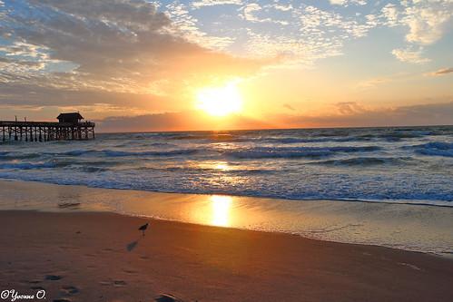 florida cocoabeach wasser water pier cocoabeachpier meer ocean sonnenaufgang sunrise wellen waves himmel sky contrast strand beach clouds landscape landschaft waterscape