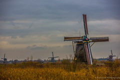 Kinderdijk, Netherlands. UNESCO World Heritage